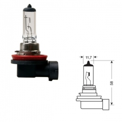 H11 Gloeilamp 12 Volt 55 Watt PGJ19-2