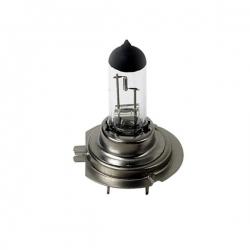 H7 Halogeenlamp H7 12 Volt 55 Watt PX26D