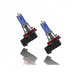 H11 Xenon Look Halogeen Lampen Set 12V 55W