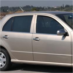RVS chromen Raamlijst  VW Golf 5