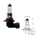 Lampen Fitting: H12